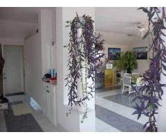 Szentendrén körpanorámás , 3lakásos ház , leszállított áron eladó